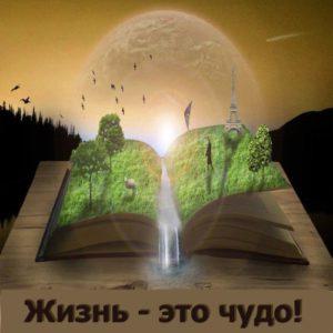 книга 500х500